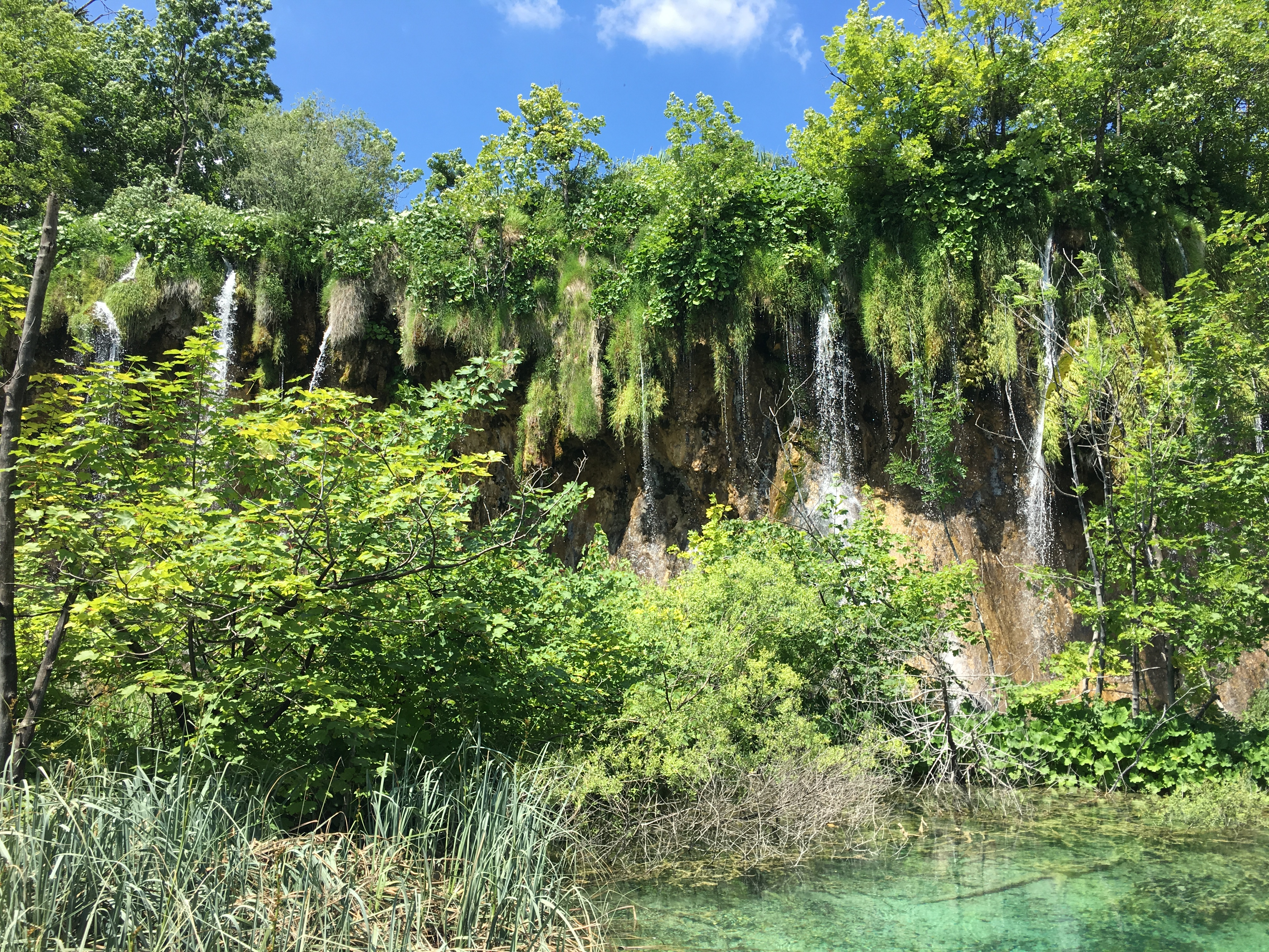 What You Need To Know Before Visiting Plitvice Lakes National  Park, Croatia